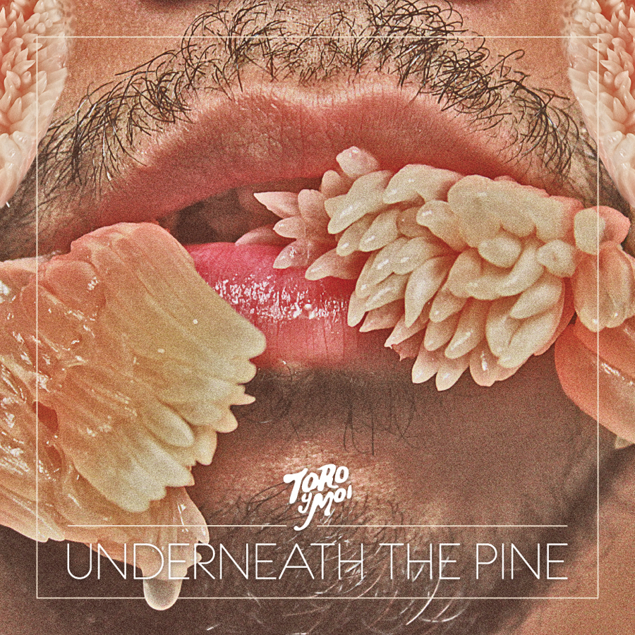 #7 ToRo y Moi - Underneath The Pine   shout out to   Skin Wade ,  the Babbito Garcia of Dallas, for turning me on to this gem.     Heavy Rotation in 11  (click to stream)