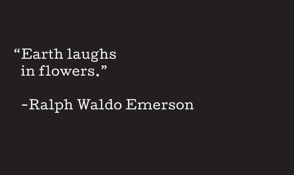 Emerson.jpg