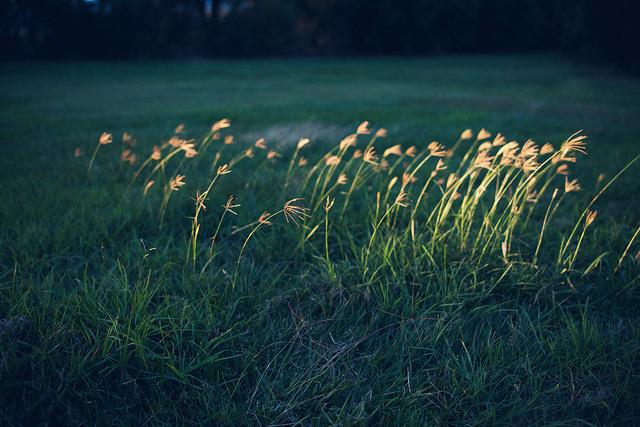 TwentySeven on Flickr.