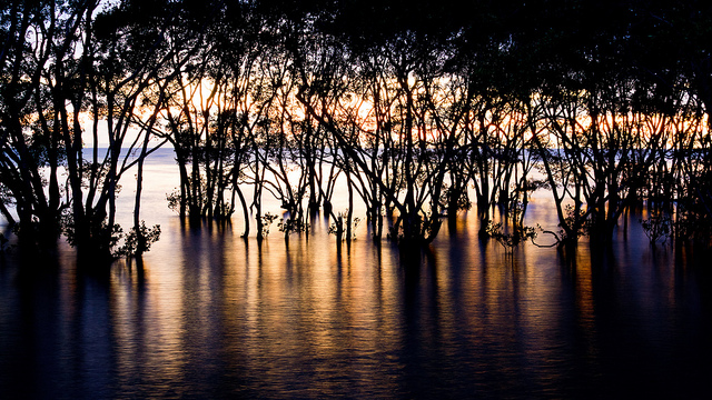 Sunrise at Nudgee beach on Flickr.
