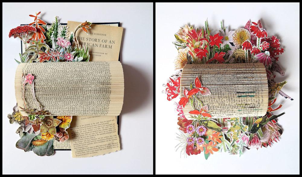 Web  - books.jpg