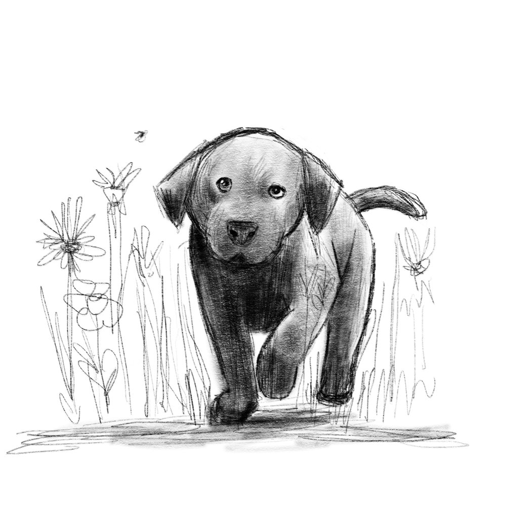 Rescue as a pup! Drawing dogs is a challenge: hind leg anatomy, snout—and in Rescue's case: his huge jowls! :)