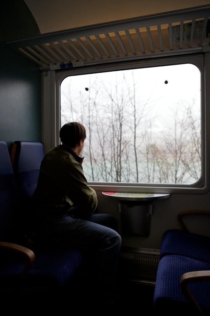 Window Wonderment