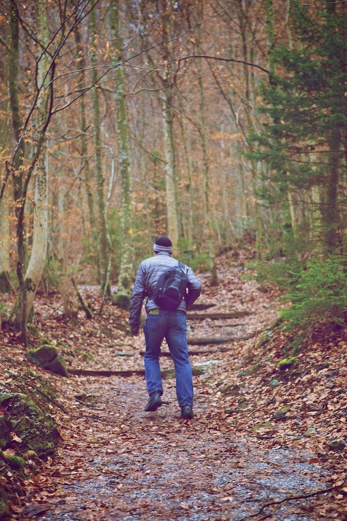 t hike