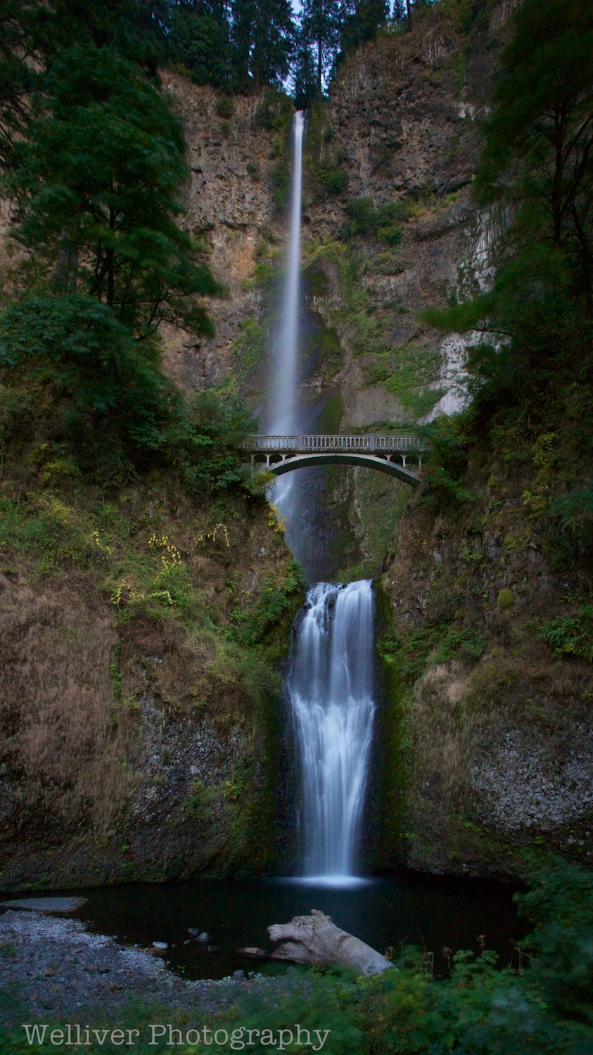 Columbia River Gorge, Oregon: Multnomah Falls by Terry.