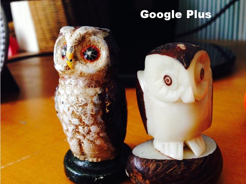 GooglePlusSize .png