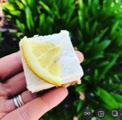lemon slicce.jpg