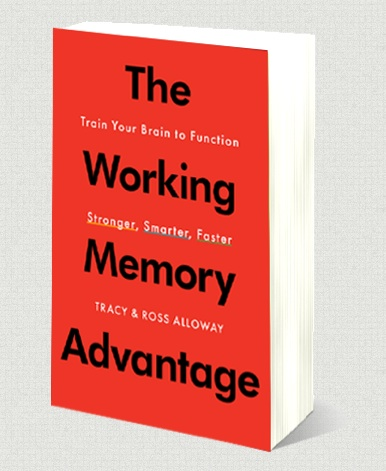 the working memory