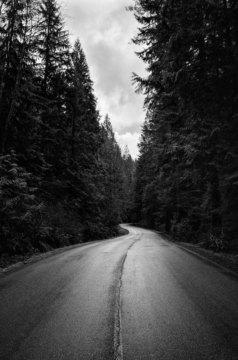 22.01.2015 - road