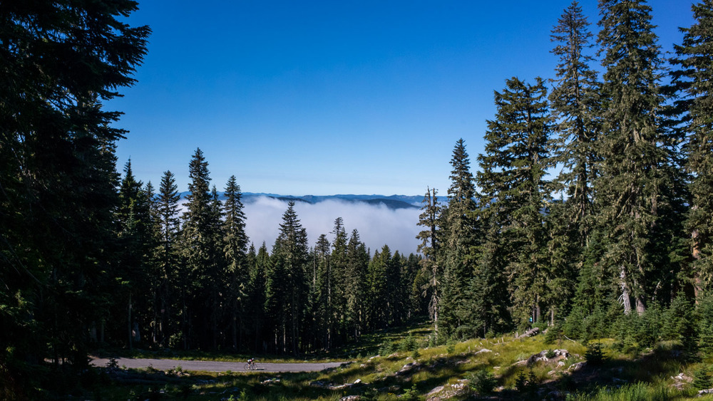 Mount Hood00015.jpg
