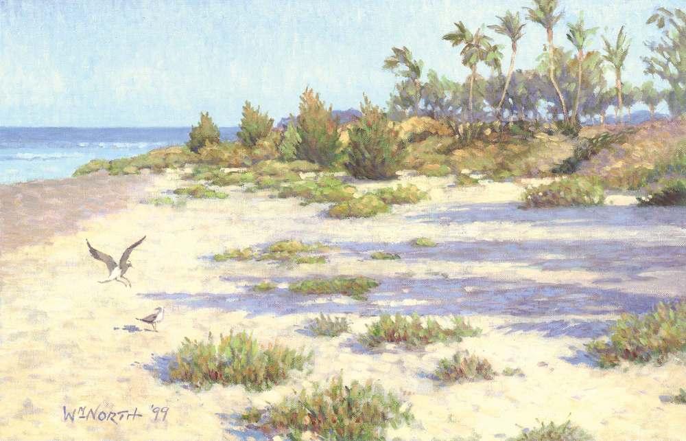 Gulf-Coast-Beach.jpg