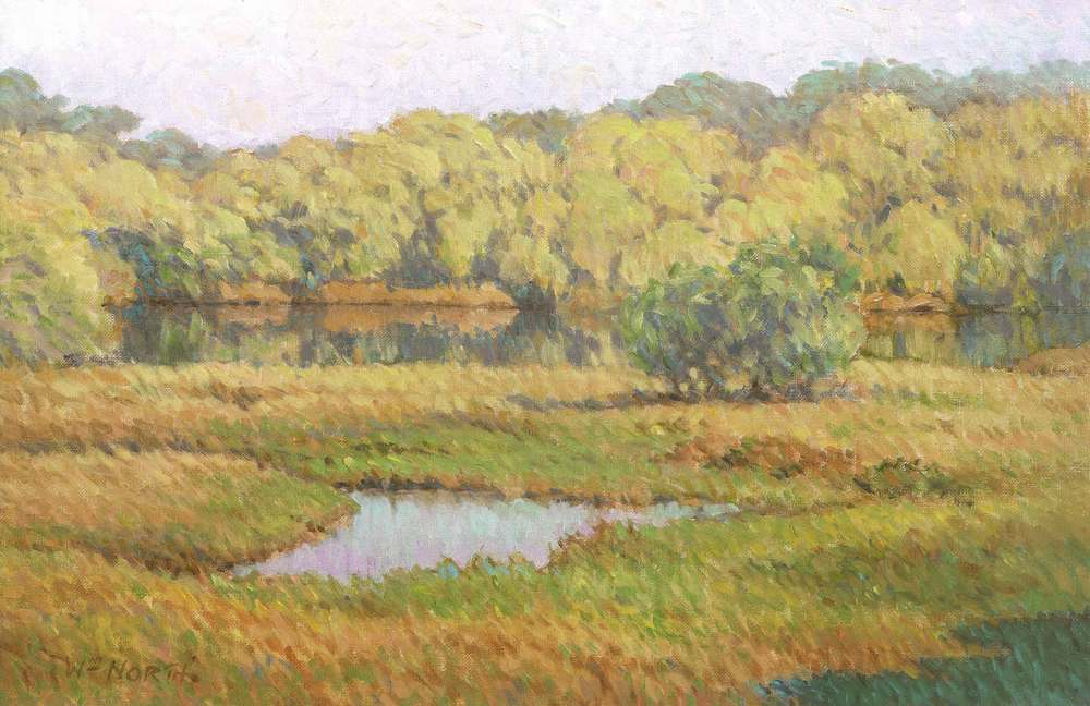 0029-mangrove-scene.jpg