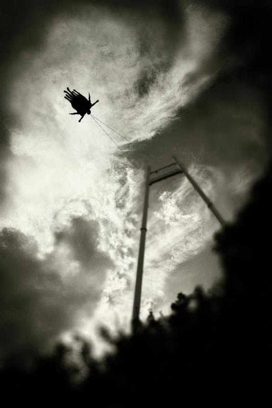 Thunderbird by Erin Menatian
