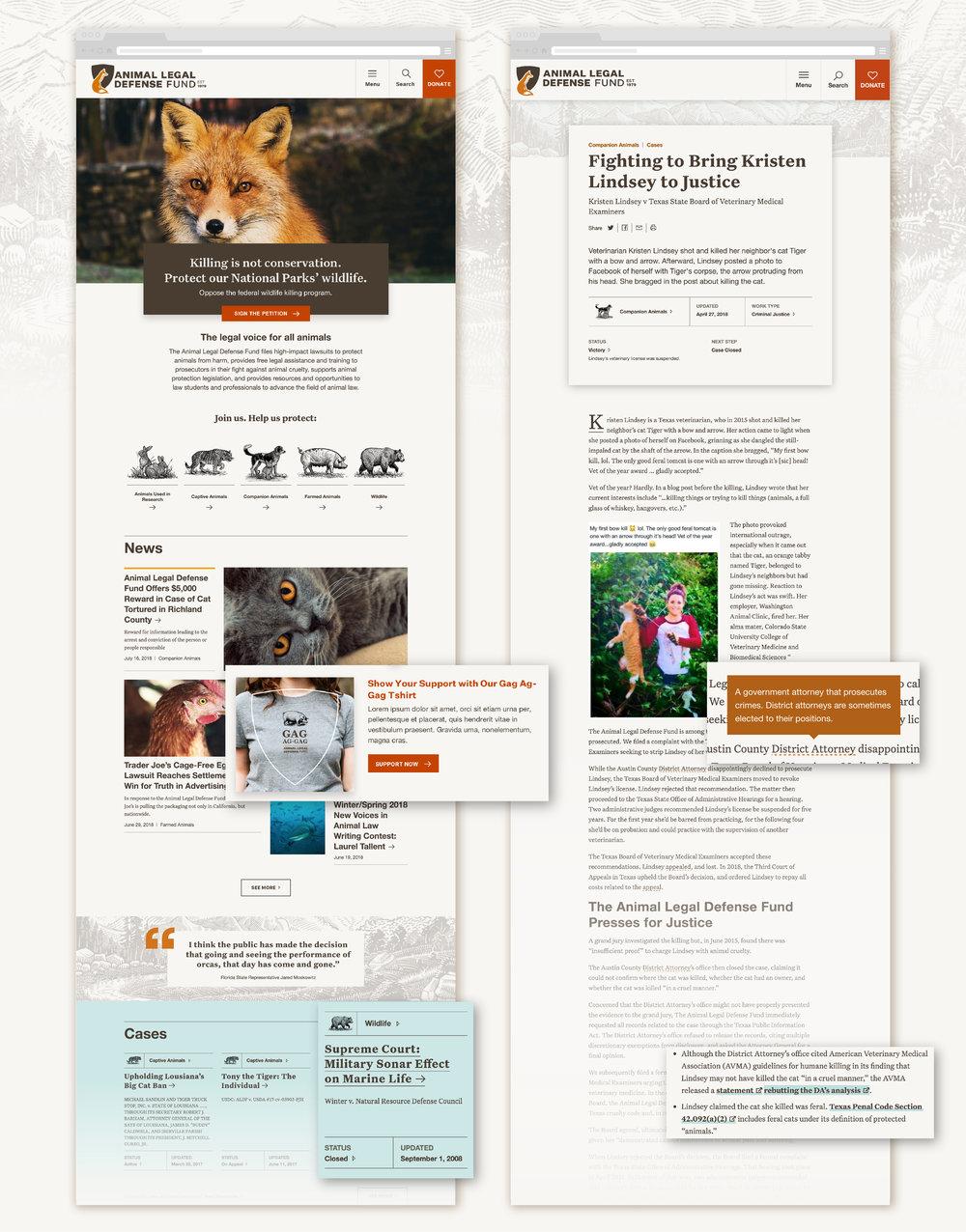 aldf-webArtboard 11.jpg