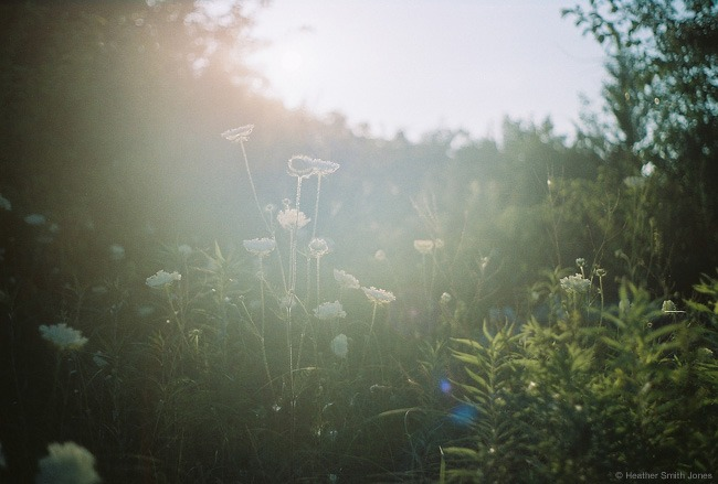©heathersmithjones_film_latesun.jpg