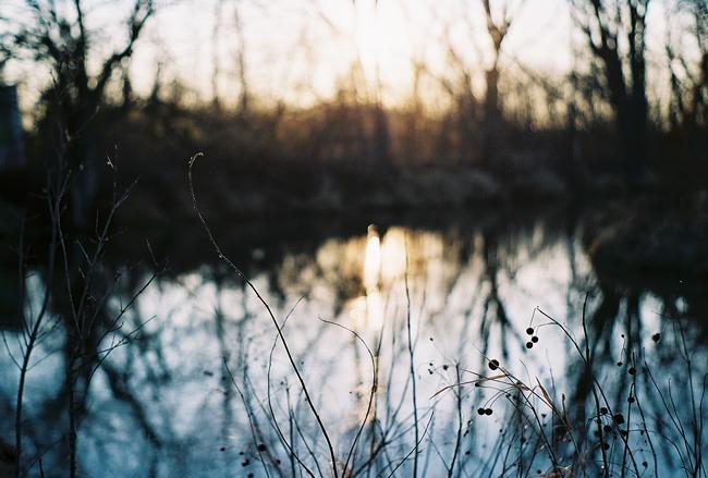 ©heathersmithjones_wetlandsfilm1.jpg