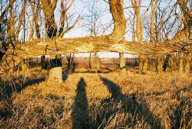 ©heathersmithjones_wetlandsfilm6.jpg