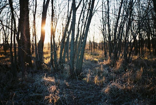 ©heathersmithjones_wetlandsfilm4.jpg
