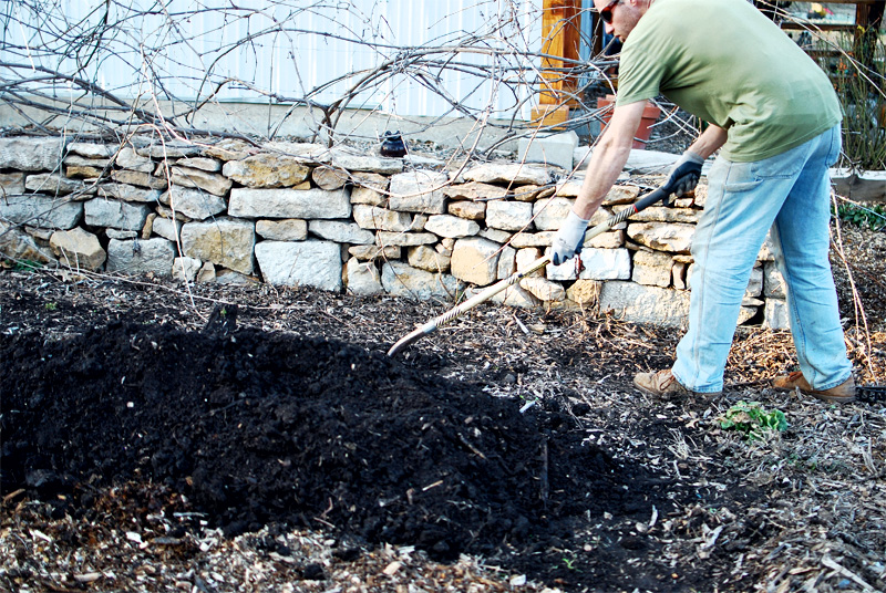 M preparing the soil, grape vines in the background.