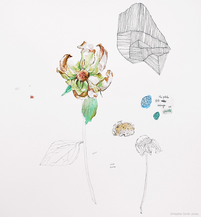 the petals fall , mixed media on paper, 2010