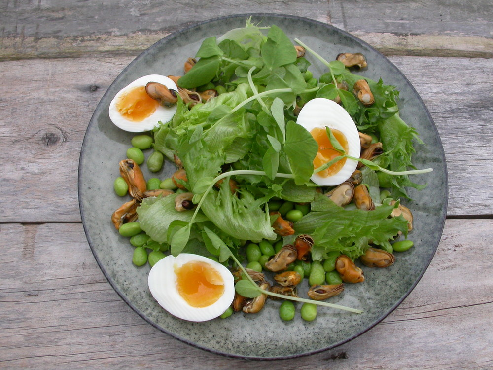 salat med muslinger, edamame og æg