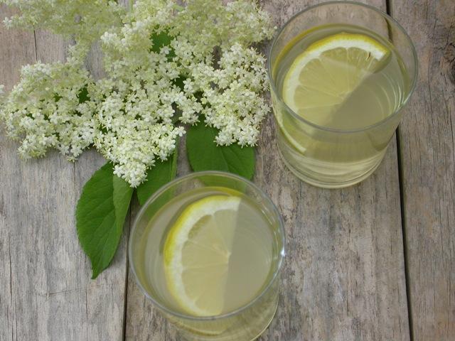 Hyldeblomstdrik uden sukker