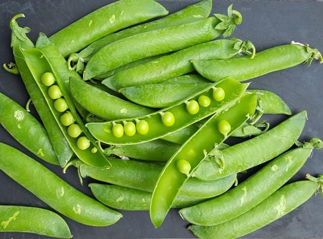 Ærter - grønne proteiner og i sæson lige nu