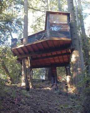 treeHouse01.jpg