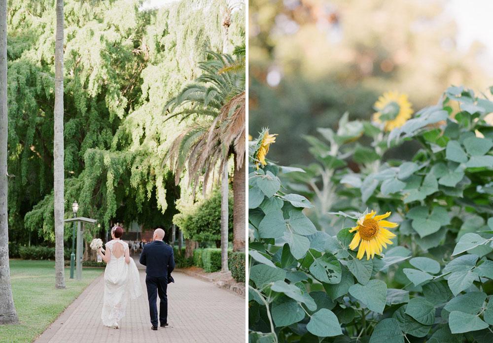 Brisbane Botanical Gardens-33.jpg