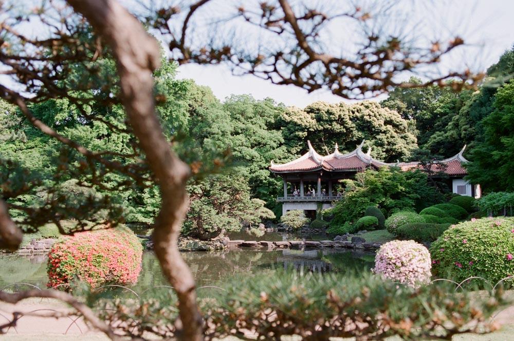 Japan-34.jpg