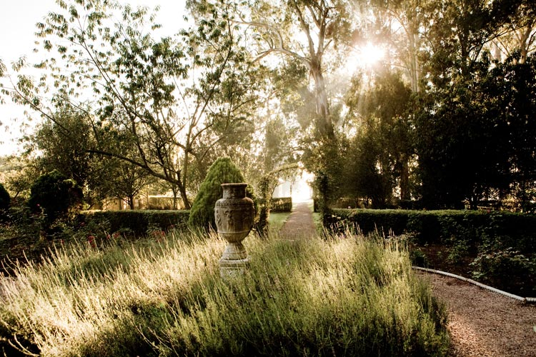 urn-in-garden.jpg