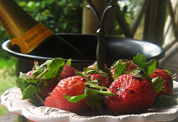 Strawberries and Champagne Photo : Jackie Cameron