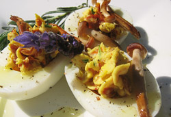 Deviled or Stuffed Eggs Photo : Jackie Cameron