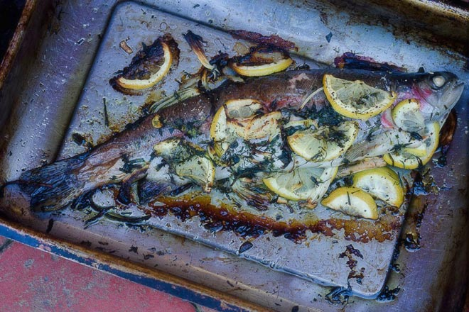 Roasted Whole Trout Photo : Karen E Photography