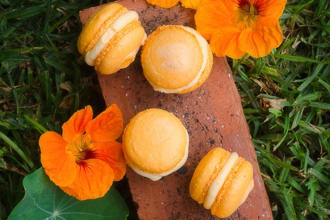 Orange Macaroons Photo : Karen E Photography