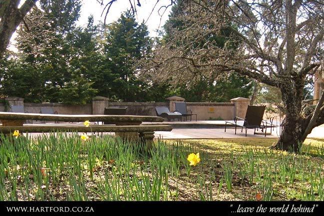 hartford-spring-garden-7.jpg