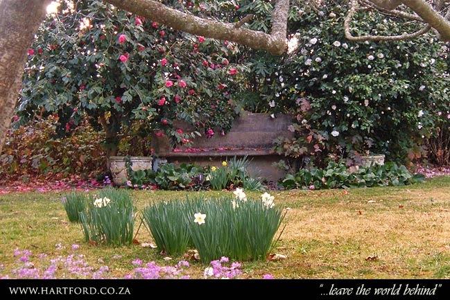 hartford-spring-garden-5.jpg