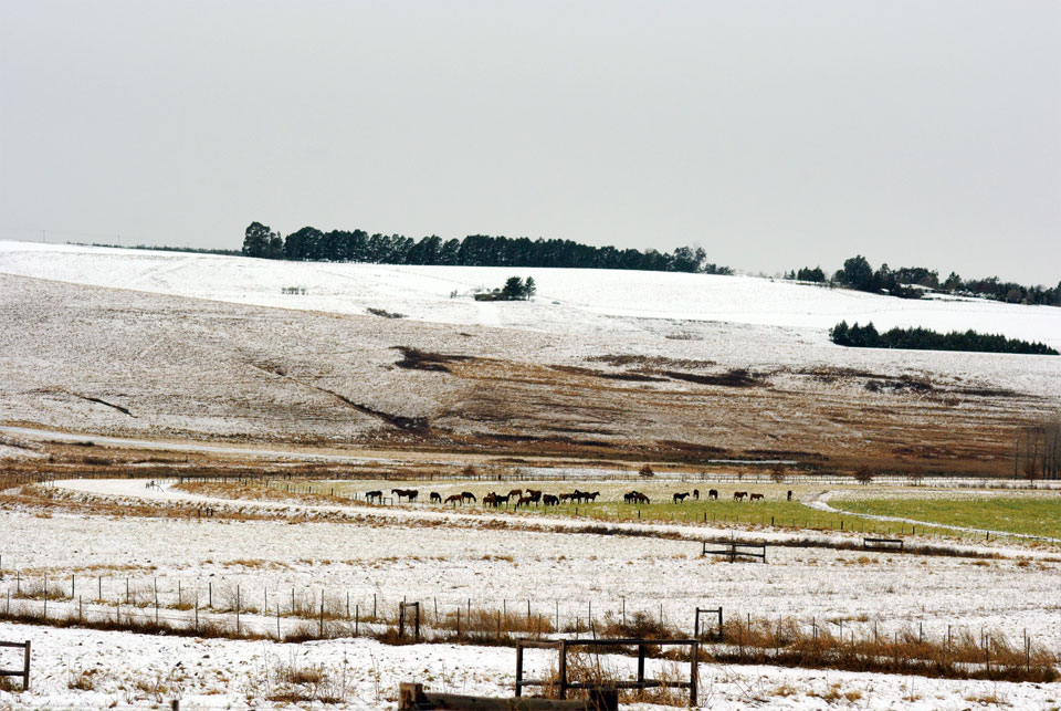 kwazulu-natal-snow-59.jpg