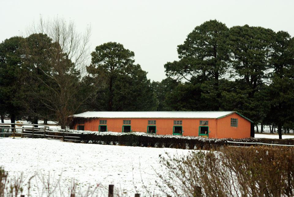 kwazulu-natal-snow-46.jpg