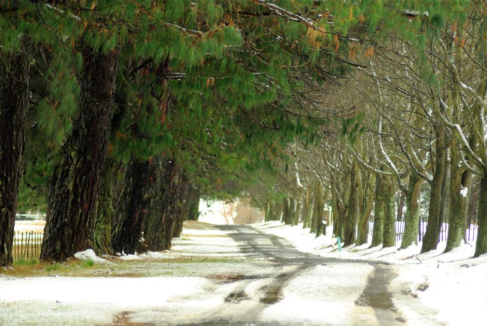 kwazulu-natal-snow-41.jpg