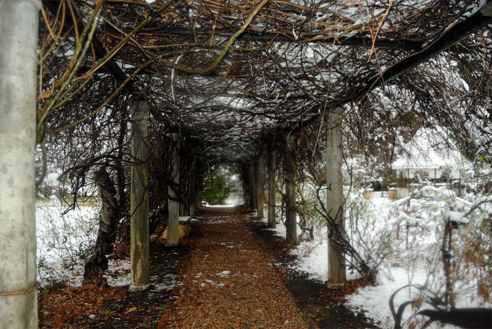 kwazulu-natal-snow-10.jpg