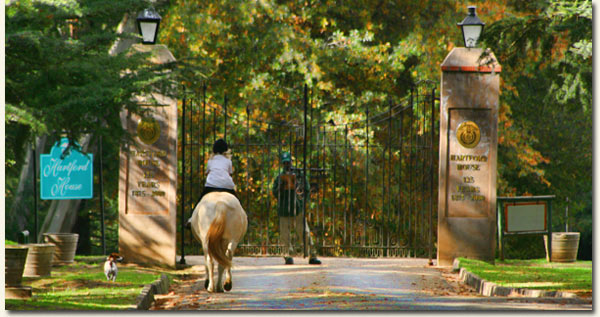 Entrance to the Hartford Estate, Mooi River, KwaZulu Natal, South Africa / Nicholas Goss (p)
