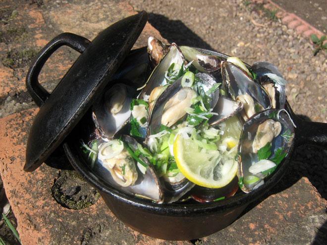Mussel Potjie Pot Photo : Jackie Cameron