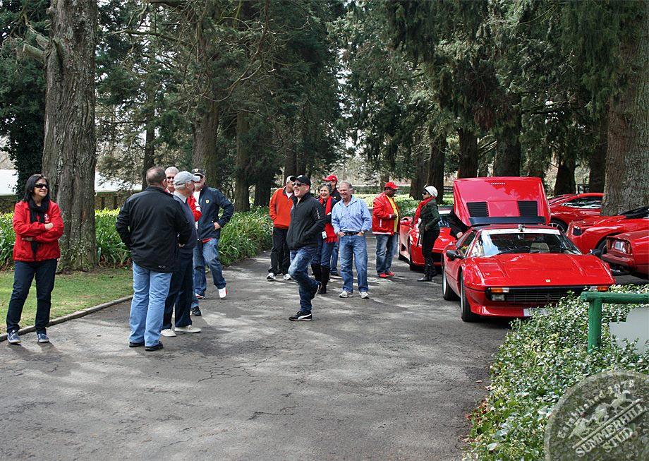 Ferrari Club 5