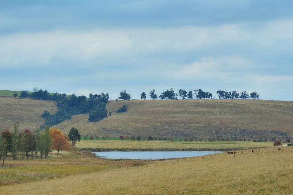 KZN Midlands Autumn 3
