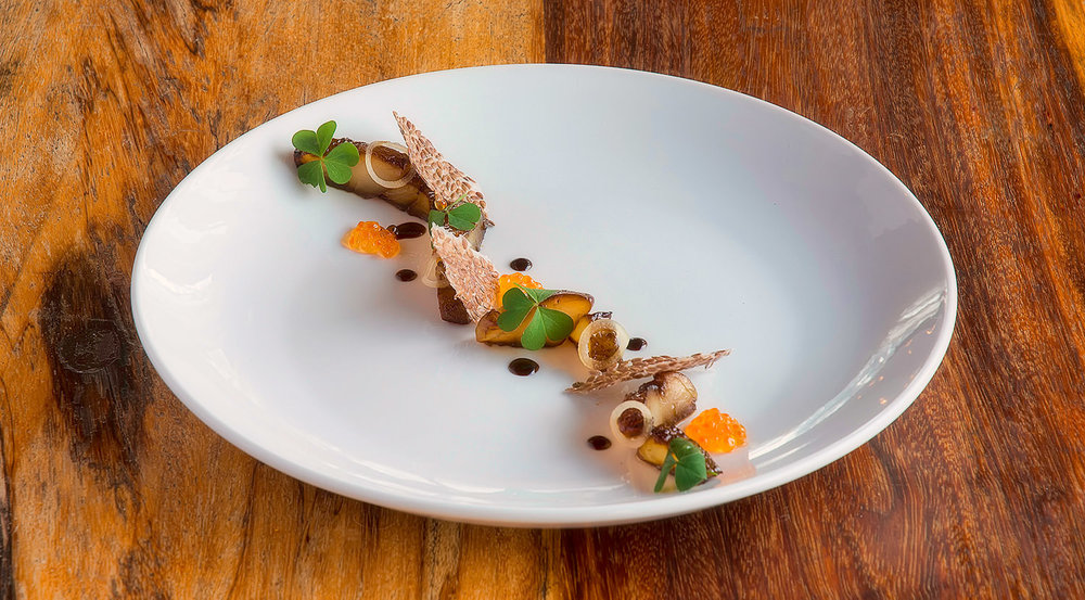 Molasses Cured Yellowtail / Travis Finch (p)