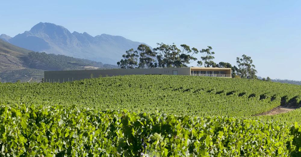 Glenelly Wine Estate