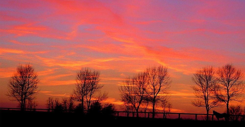 Sunset / Annet Becker (p)