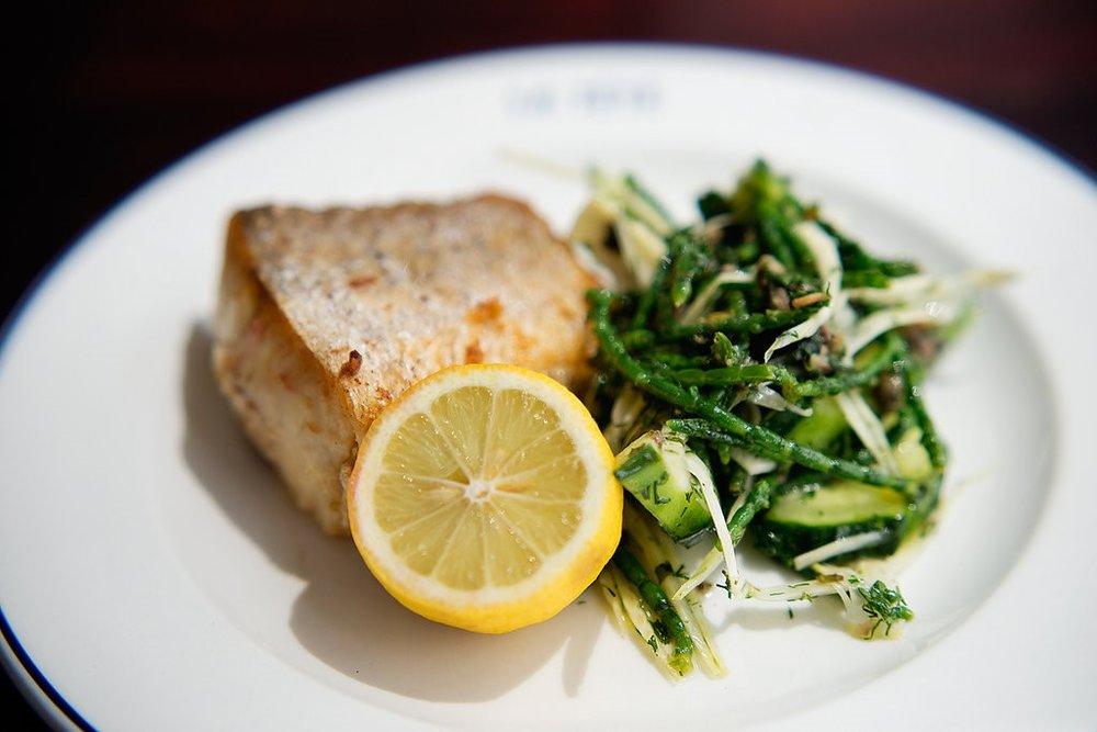 SASSI Fish