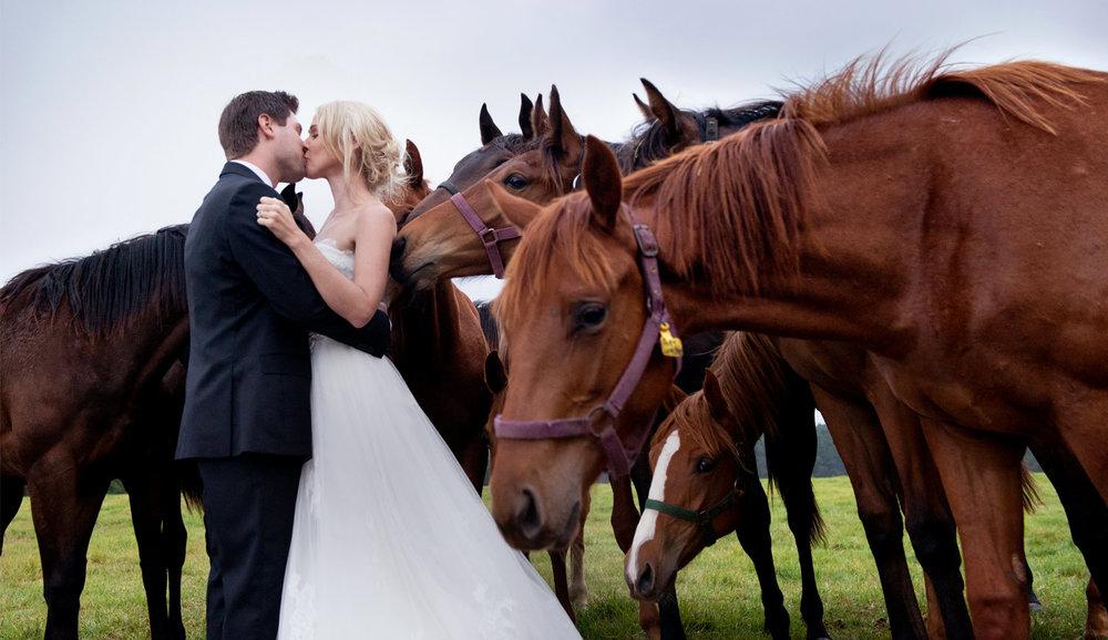HH-wedding-02.jpg